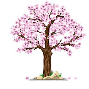 Spring Gardening Information